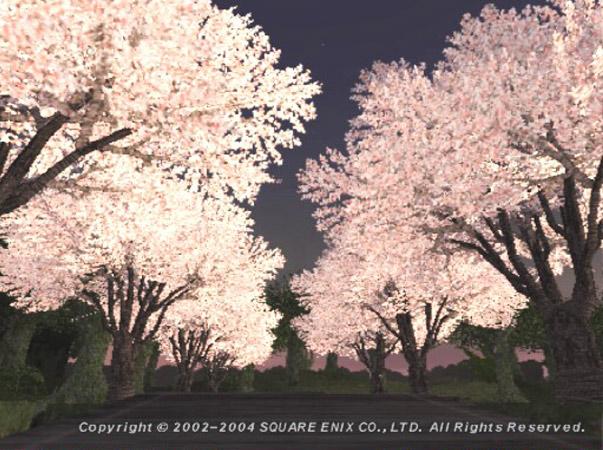 ヴァナの桜