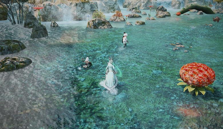 ブレイフロクスの水辺