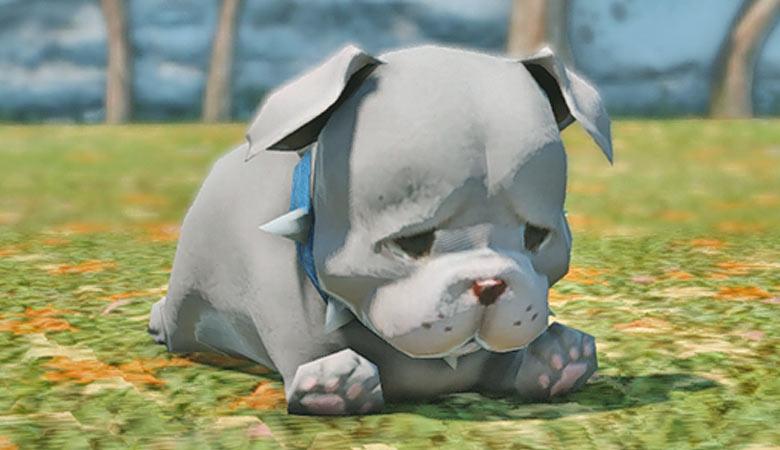 """【FF14】猫派の方もぜひ!可愛い""""犬系ミニオン""""を見てみよう~!6種類ご紹介!"""