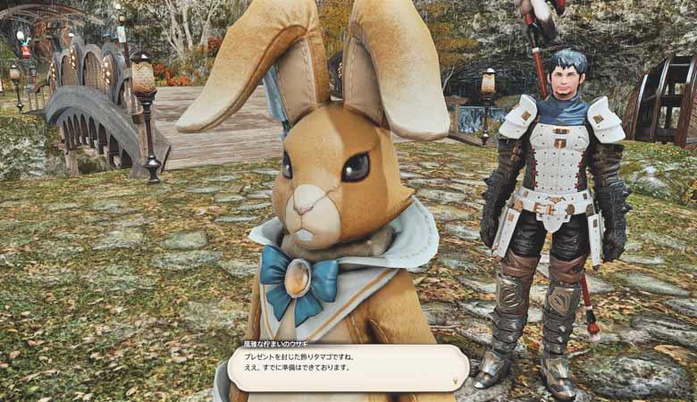 このウサギさんは?