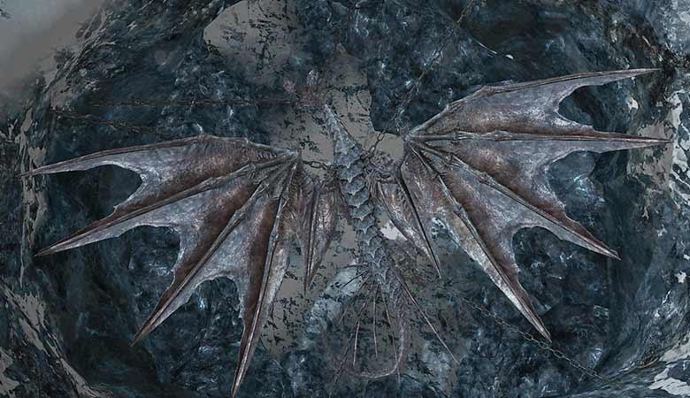 鎖に繋がれたドラゴン:上面