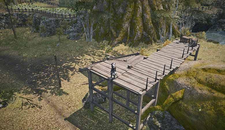 黒衣の森:中央森林