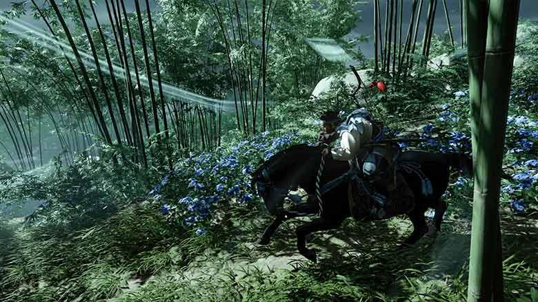 青い花に導かれて