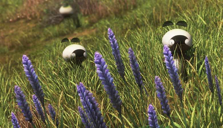 紫花とマンドラ